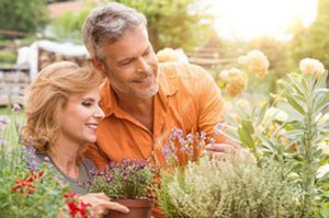 Saratoga Couples Counseling and Marriage Therapy